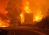 Tragiczny bilans pożaru lasów w Portugalii [FOTO]