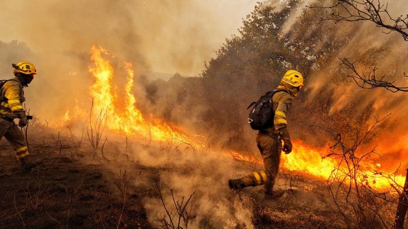 Pożary trawią Hiszpanię i Portugalię. Rośnie tragiczny bilans ofiar