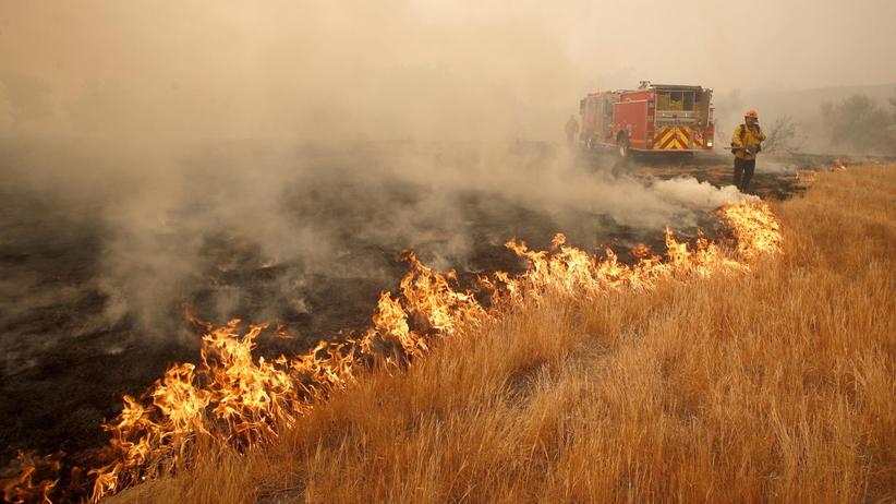 Pożary w Kalifornii: makabryczne odkrycie ratowników. Znaleźli 14 zwęglonych ciał!