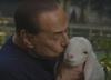 Berlusconi tuli jagnię i je karmi. Promuje bezmięsne święta [WIDEO]