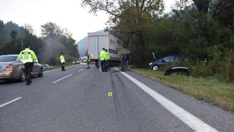 Auto uderzyło w niedźwiedzia. Nie żyje jedna osoba