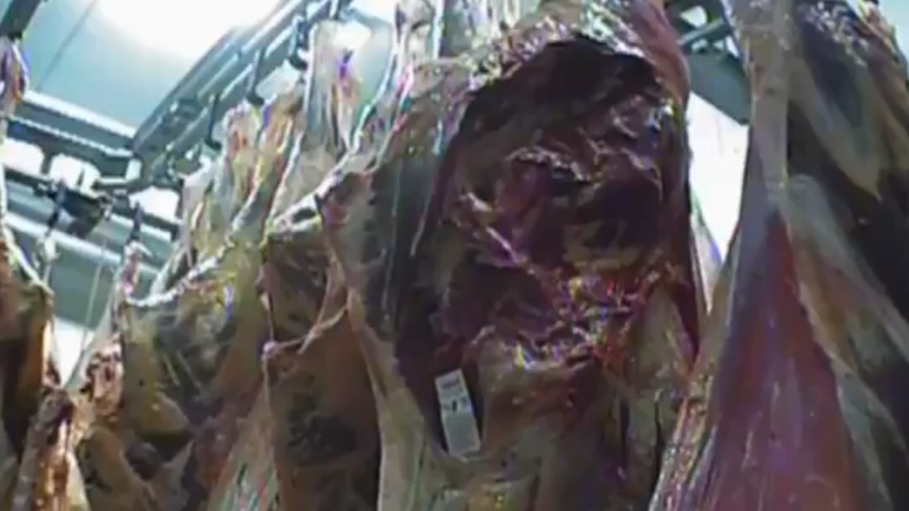 Słowacja: Mięso z chorego bydła trafiło do restauracji i szkół. ''Jadły je także dzieci''