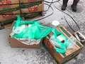 Kokaina ukryta w bananach. Transport miał trafić do więźniów