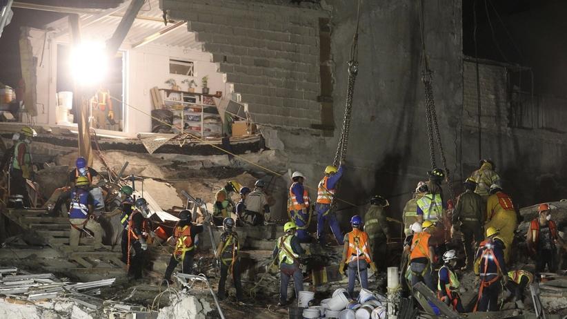 Trzęsienie ziemi w Meksyku: ratownicy uratowali pieska. Był pod gruzami wiele dni [WIDEO]