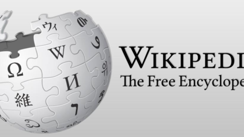 Władze Turcji tłumaczą, czemu zablokowały dostęp do Wikipedii