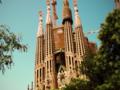 Ujawniono plany zamachowców z Barcelony. Ofiar mogłoby być znacznie więcej