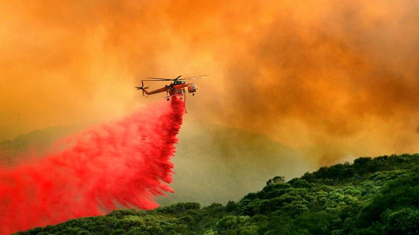 Kalifornia w ogniu. Nie żyje co najmniej 40 osób