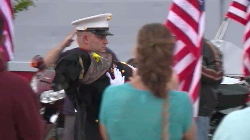 Wojskowy pies pożegnany z najwyższymi honorami. Wzruszające nagranie z USA [WIDEO]