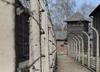 Amerykańscy millenialsi nie wiedzą, czym był Holokaust