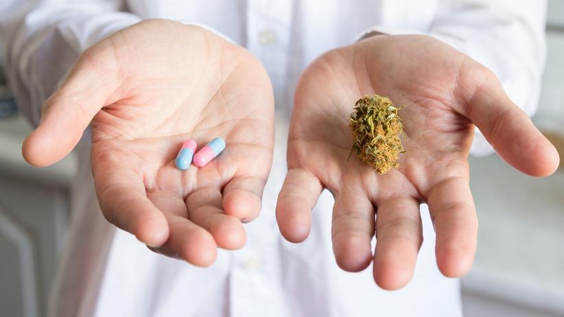 MSW zdecydowało. Medyczna marihuana legalna