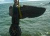 Wyłowili 400-kilogramowego orła ze swastyką. Niemcy proszą, aby go nie wystawiać
