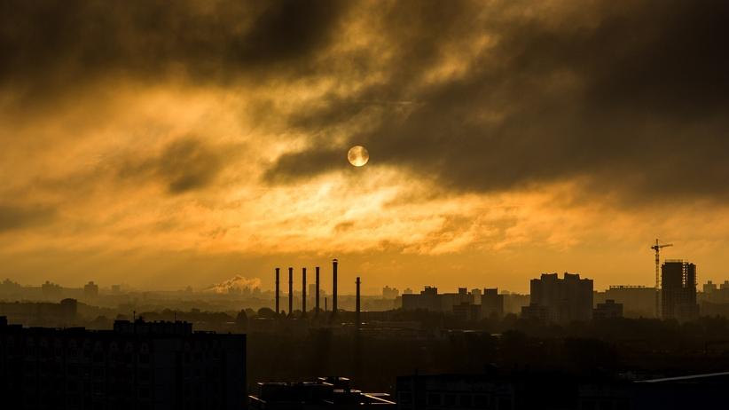 To odkrycie zakończy problem smogu? Naukowcy dokonali przełomowych badań