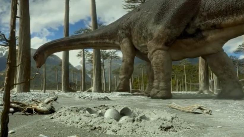 jaja dinozaurów