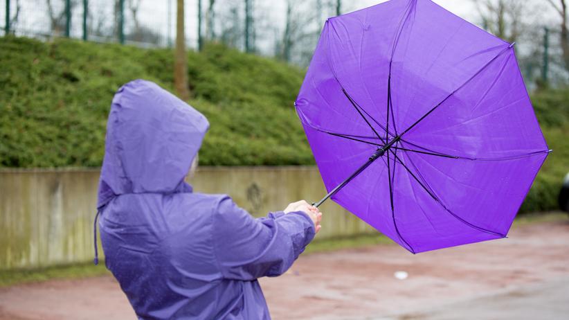 IMGW ostrzega przed silnym wiatrem. Uwaga, zagrożonych jest 13 województw