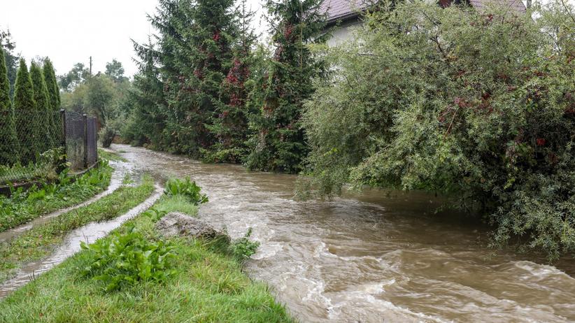 IMGW ostrzega przed intensywnym deszczem. Możliwe podtopienia i powodzie
