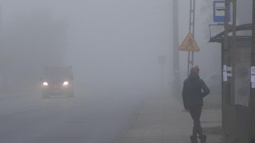 Pogoda. IMGW alarmuje i wydaje ostrzeżenia przed gęstą mgłą na dużej części kraju