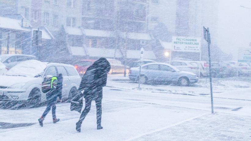 Śnieżyca