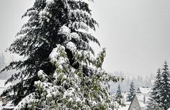 snieg-2