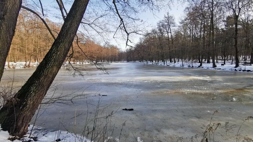 Pod 66-latkiem załamał się lód