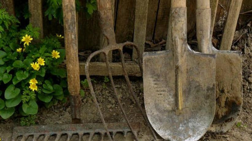 Zwłoki w ogrodzie
