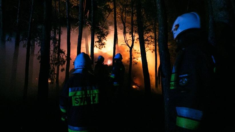 Ogromny pożar lasu w Cieksynie. ''Zagrożenie dla domków letniskowych''