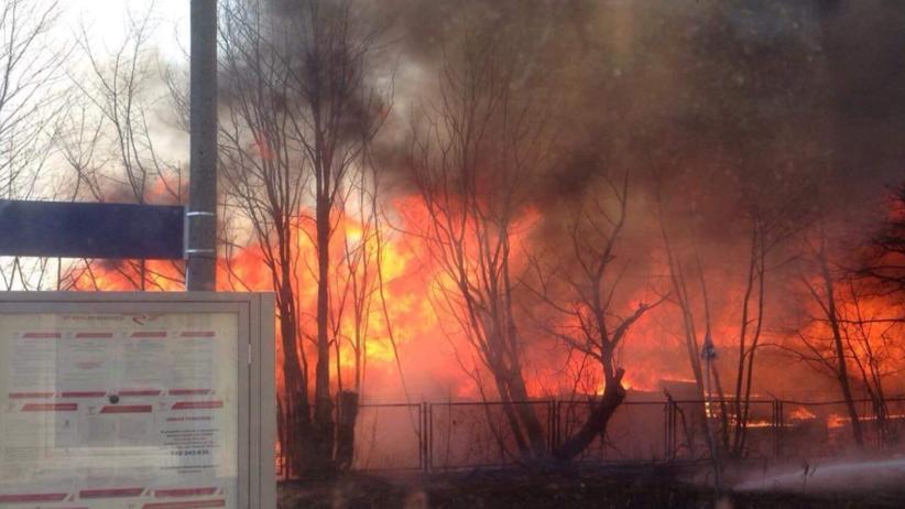 Ogromny pożar hali produkcyjnej. Z ogniem walczyły 22 zastępy strażackie