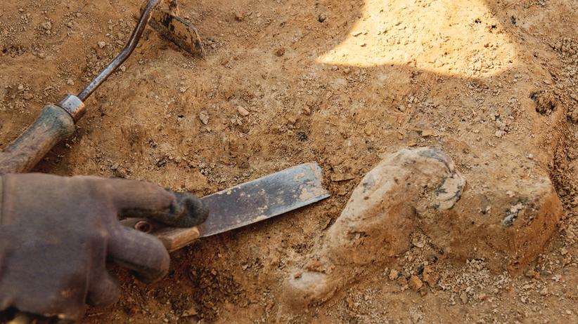 masowe groby