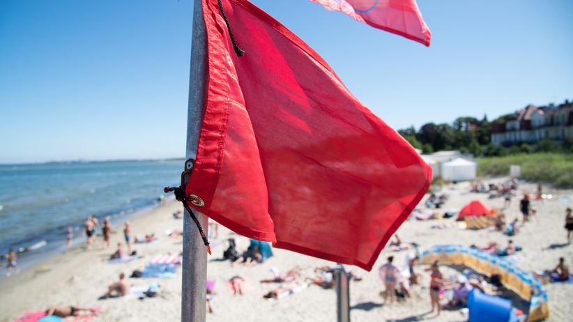 Kąpieliska nad Bałtykiem zamknięte przez sinice