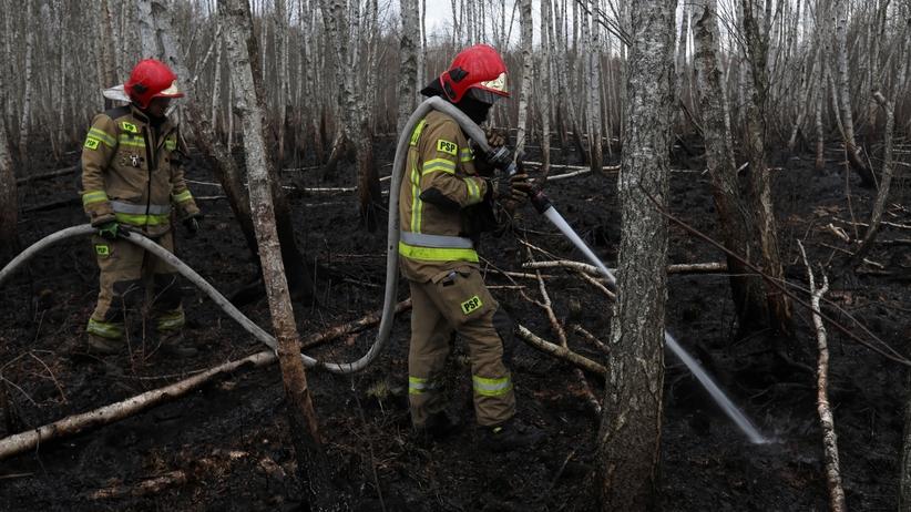 Kolejne lasy zamknięte. Zakaz wstępu przez zagrożenie pożarowe, sytuacja jest poważna