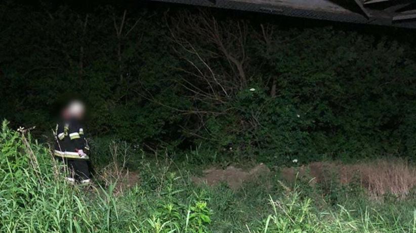 Dramatyczne odkrycie nad Wisłą. Znaleziono zwłoki wiszące na drzewie