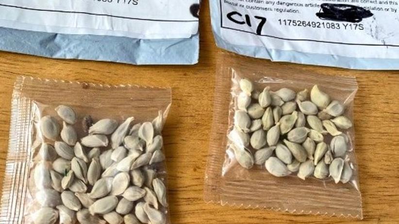 Nasiona z Chin, reaguje Policja