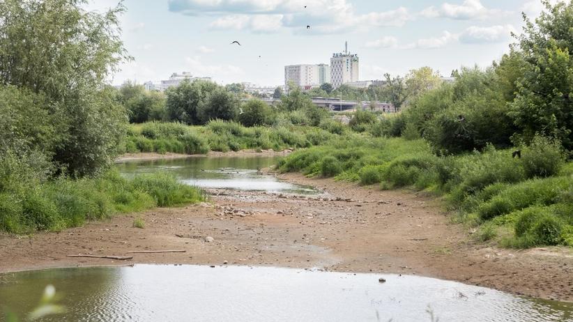 Dramatycznie niski poziom wody w rzekach. Będzie jeszcze gorzej