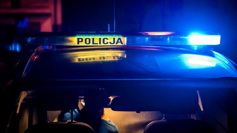Nowe Gołuszowice, po zderzeniu z sarną zginął motocyklista