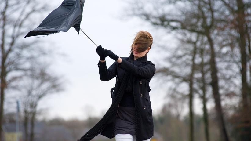 IMGW ostrzega przed silnym wiatrem. Alerty dla kilku województw