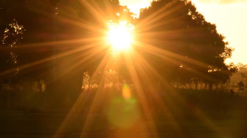 Przed nami słoneczny i ciepły dzień. Tylko miejscami wystąpią burze