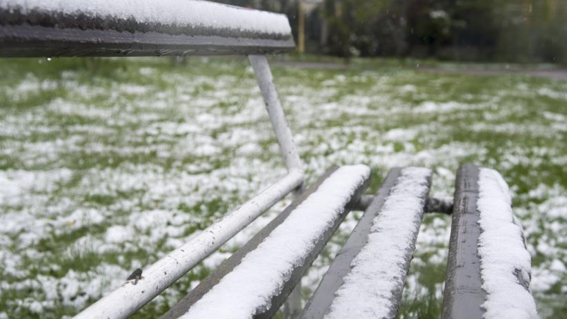 Pogoda w maju oszalała. IMGW wydaje alerty: mróz i 15 cm śniegu