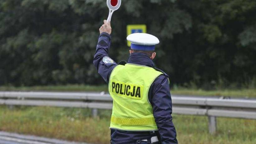 Poseł stracił prawo jazdy. Szef wielkopolskiego okręgu PiS: to moja wina