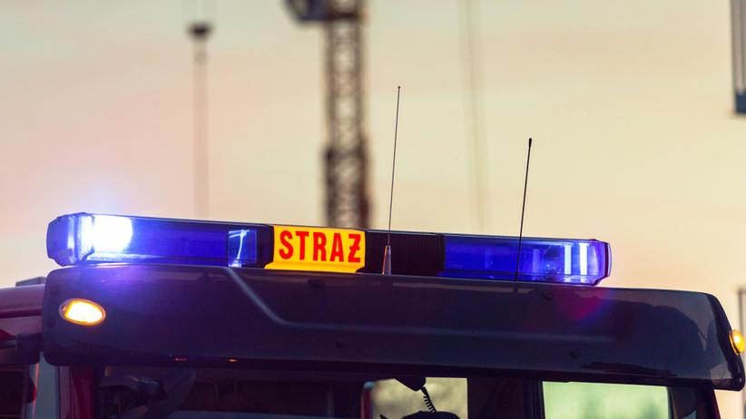 Pożar garbarni w okolicach Łasku. Na miejscu blisko 100 strażaków