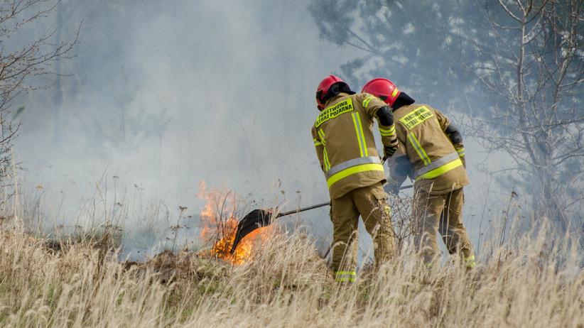 Pożary w Wielkopolsce - zdjęcie ilustracyjne