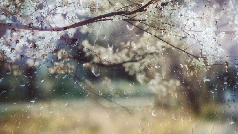 Pogoda. Miejscami opady i burze
