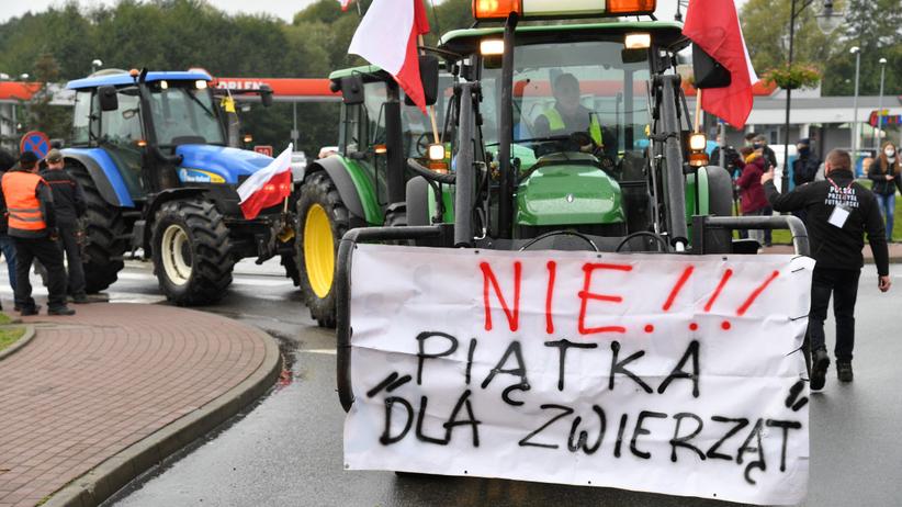 Protesty rolników