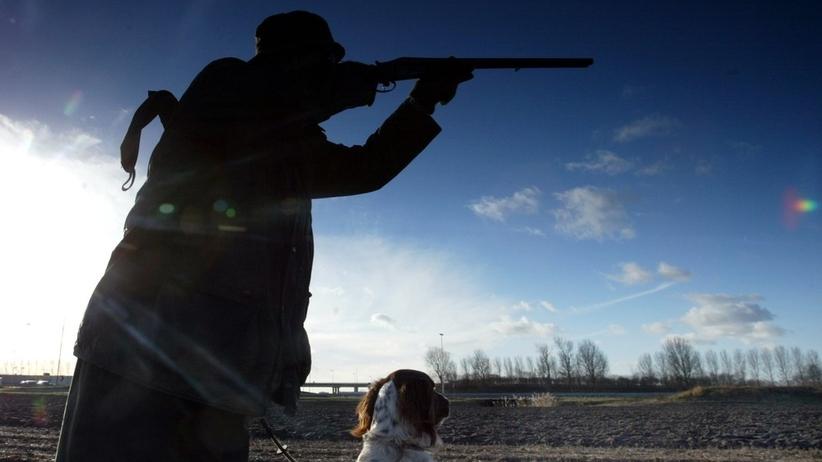 Myśliwy oddał przypadkowy strzał. Pocisk przeszył dom, w którym była rodzina z dzieckiem. Grozi mu więzienie