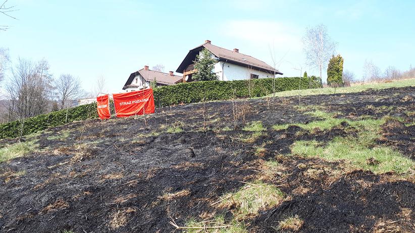 Tragedia podczas wypalania traw. Strażacy znaleźli zwłoki kobiety