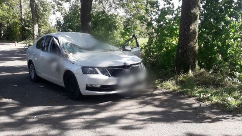wypadek w miejscowości Lutry