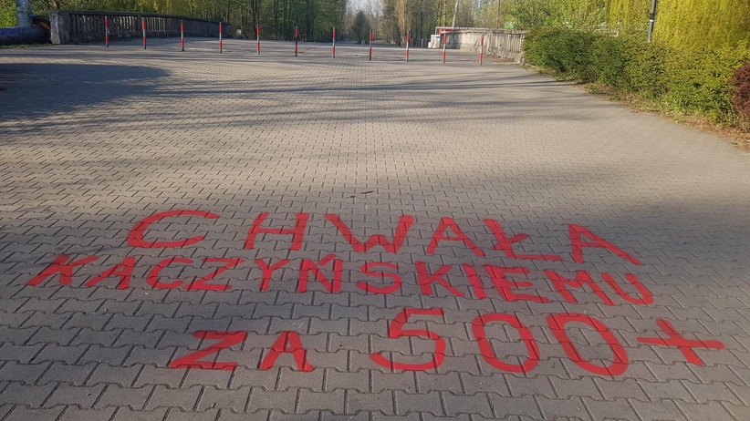 Sosnowiec park Stawiki