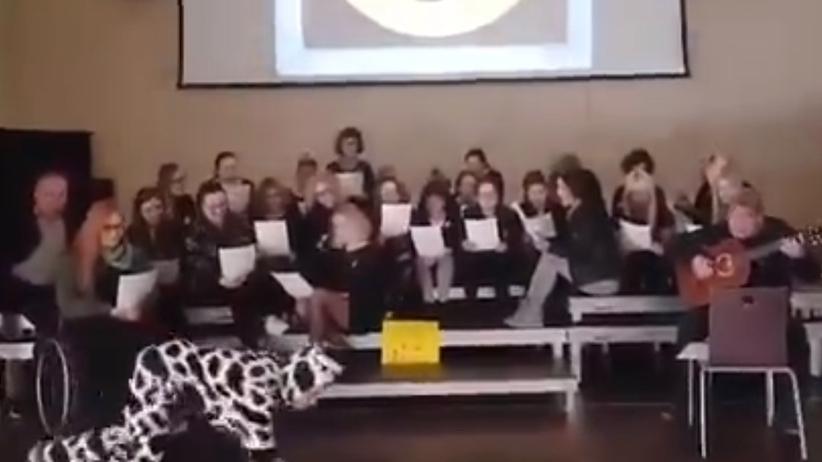 Nauczyciel przebrał się za krowę i… muczał. Nagranie podbija sieć
