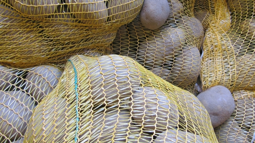 42-letni Afgańczyk znaleziony w transporcie ziemniaków. Chciał dostać się do Francji