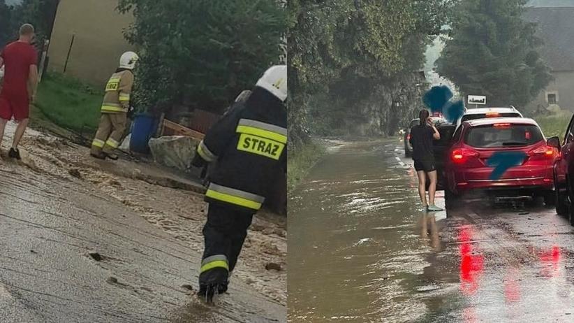 Strzyżowiec zalany