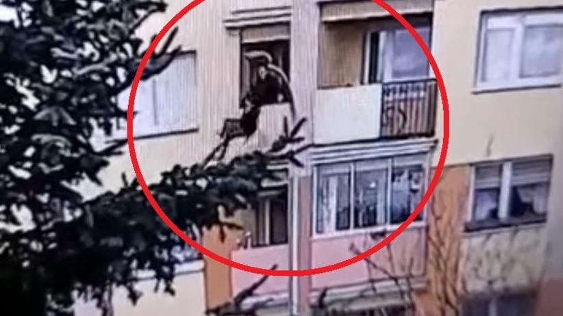 suwałki wyrzucił babcię z balkonu