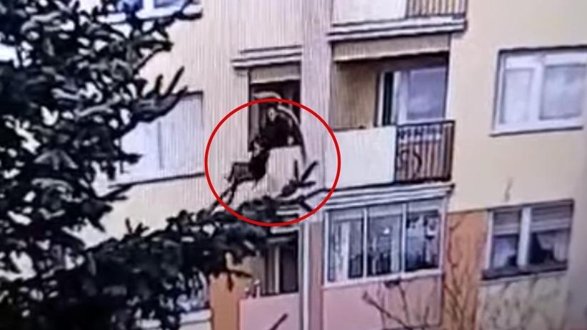 Suwałki. Wyrzucił babcię przez balkon, nie poniesie kary